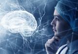 Autismo e schizofrenia: prevenirle con mini cervelli 3D