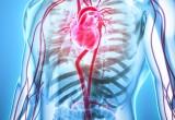 Cardiologia: poche le linee guida basate su evidenze di alto livello