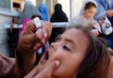 OMS: polio, eradicati due ceppi del virus su tre