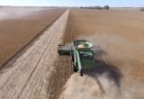 Glifosato in agricoltura, UE: solo con la maggioranza qualificata dei Paesi membri