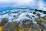Clima: i parassiti dovuti all'innalzamento dei mari minacciano la fauna marina