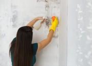 Umidità e muffa in casa? E' rischio asma, allergie, sinusiti e bronchiti