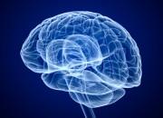 La radiochirurgia può non aumentare il rischio di neoplasie intracraniche