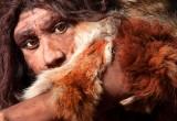 L'uomo di Neanderthal cacciava con la lancia e da vicino