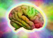 Droghe e cervello: scoperti possibili effetti non dannosi