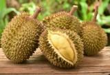 Ecco perché il durian è il frutto più puzzolente del mondo