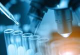 Nobel per la chimica 2017 agli scienziati che hanno permesso di 'vedere' le biomolecole
