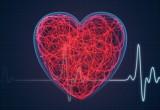 Malattie cardiache congenite, ecco le nuove linee guida