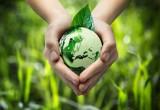Yogurt green: Gli scarti caseari diventano carburante