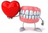 Denti e cuore: la loro salute è reciproca