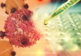 Leucemia: curato bimbo con terapia genica