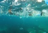 Silver 2, il robot che pulisce gli oceani dalla plastica