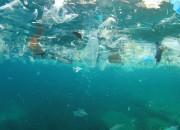 Microplastiche da record nel mare Artico