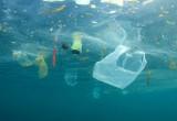 Inquinamento dei mari: al via sperimentazione con dispositivo mangia rifiuti