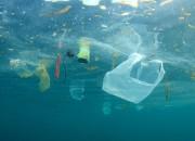 Salute degli oceani: al via test globale sull'inquinamento delle acque