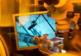 Efsa: linee guida sulla sicurezza nanotecnologie nella catena alimentare