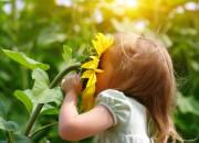 Odori: lo stretto legame tra olfatto e ricordi