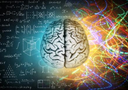L'intervista – l'effetto della lettura sulla corteccia visiva
