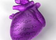 Nuovi materiali intelligenti: un passo verso il cuore artificiale
