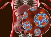 Epatite C in aumento tra i giovani