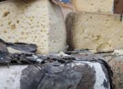 Stress: nei formaggi trentini i batteri che lo combattono