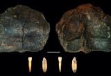 Grotta di Ciota Ciara: scoperti i più antichi resti umani del Nord Italia