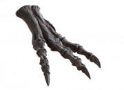 Tirannosauro: scoperta la prima impronta in Cina