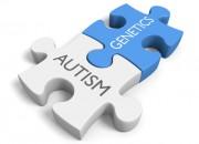 Autismo: identificati 102 geni associati alla patologia