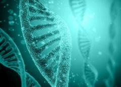 Scoperto gene che regola la risposta immunitaria