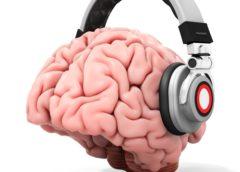 """Epilessia refrattaria, """"effetto Mozart K448"""": ascoltare almeno 30 secondi della sonata riduce scariche epilettiformi interictali"""