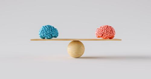 cervello uomo donna